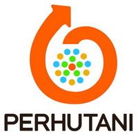 logo_pht_new